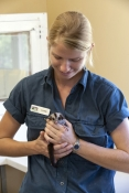 Animal Carers & Orphaned Animals