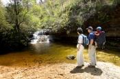 blue-mountains-national-park;bush-walkers;bushwalkers;walking-in-blue-mountains-national-park;austra