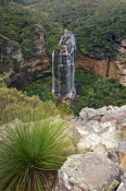 blue-mountains-national-park;blue-mountains;wentworth-falls;wentworth;new-south-wales-national-park;australian-national-park;steven-david-miller;natural-wanders