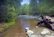 gloucester-tops-riverside-caravan-park;gloucester-tops;gloucester-scenery;steven-david-miller;natural-wanders