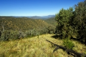the-barry-way;barry-way;snowy-mountains;kosciuzkco-national-park;australian-national-park;new-south-