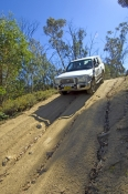 4Wheel Driving & 4WD Tracks