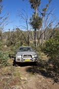 snowy-wilderness;snowy-mountains;snowy-wilderness-property;4wd;4WD;toyota-4wd;steven-david-miller;natural-wanders