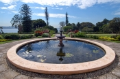government-house-gardens;royal-botanic-gardens;sydney-botanic-gardens;sydney-botanical-gardens;sydney-royal-botanic-gardens;sydney;sydney-tourist-attractions;new-south-wales;steven-david-miller;natural-wanders
