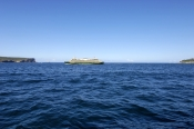 sydney-ferries;sydney-ferry;sydney-tourist-attractions;sydney-harbour-heads-sydney-harbour;sydney-ha