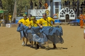 alice-springs;the-alice;henley-on-todd;henley-on-todd-regatta;henley-on-todd;todd-river;steven-david