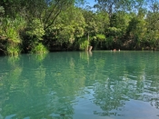 berry-springs;berry-springs-nature-park;darwin;northern-territory;calm-water;peaceful-picture;reflec
