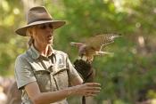 territory-wildlife-park-bird-show;northern-territory-wildlife-park;territory-wildlife-park;northern-