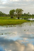 yellow-waters;south-alligator-river;kakadu-national-park;yellow-waters-boat-trip;kakadu-scenery;yellow-waters-scenery;yellow-waters-sunset;kakadu-sunset;northern-territory-wetland;top-end-wetland;australian-wetland;river-scenery