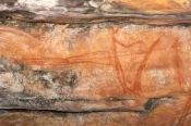 ubirr-rock-art-site;aboriginal-rock-art;kakadu-national-park;kakadu;northern-territory;northern-territory-national-park;rock-art;australian-rock-art;ubirr;human-figure-rock-art;post-contact-rock-art