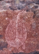 ubirr-rock-art-site;aboriginal-rock-art;kakadu-national-park;kakadu;northern-territory;northern-territory-national-park;rock-art;australian-rock-art;ubirr;turtle-in-rock-art;x-ray-rock-art;xray-rock-art
