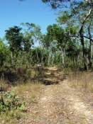 mary-river-national-park;mary-river;mary-river-4wd-track;mary-river-four-wheel-drive-track;4wd;4wd-v