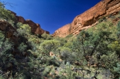 Watarrka (Kings Canyon) National Park