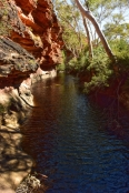 kings-canyon;kings-canyon-national-park