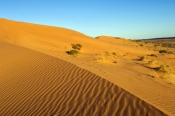 big-red;simpson-desert;simpson-desert-crossing;central-australia;birdsville;simpson-desert-sand-hill;sand-hill;queensland