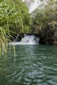 indarri-falls-walk;lawn-hill;lawn-hill-national-park;boodjamulla-national-park;sandstone-scenery;pink-mulla-mulla;queensland-national-park;australian-national-park