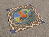 brisbane;south-bank;mosaic;bird-mosaic;sidewalk;foot-path;sidewalk-art;foot-path-art;rainbow-lorikeet