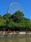 the-wheel-of-brisbane;wheel-of-brisbane;brisbane;south-bank;ferris-wheel;channel-seven-ferris-wheel;channel-7-ferris-wheel