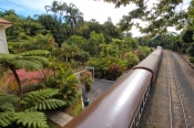 kuranda-railway;kuranda-scenic-railway;kuranda;kuranda-railway-station;cairns;far-north-queensland