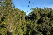 skyrail;skyrail-rainforest-cableway;barron-gorge;barron-gorge-national-park;cairns;queensland;far-north-queensland