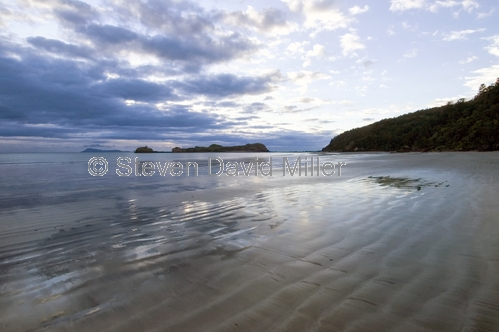 casuarina bay;cape hillsborough national park;queensland national park;australian national park;cape hillsborough national park beach