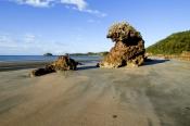 casuarina-bay;cape-hillsborough-national-park;queensland-national-park;australian-national-park;cape