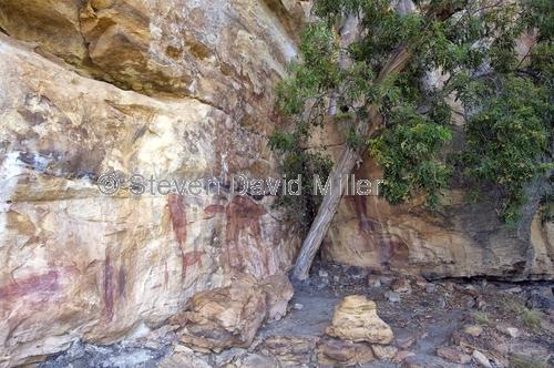 quinkan aboriginal rock art;honemoon rock art shelter;jowalbinna rock art safari camp;cape york;quikan rock art;aboriginal rock art;australian rock art;rock art;jowalbinna
