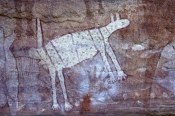 quinkan-aboriginal-rock-art;wallaroo-rock-art-shelter;rock-art-shelter;jowalbinna-rock-art-safari-camp;cape-york;quikan-rock-art;aboriginal-rock-art;australian-rock-art;rock-art;jowalbinna