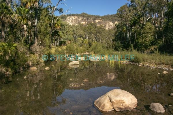 australian national parks;carnarvon gorge section of carnarvon national park