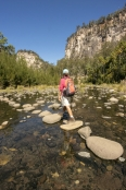 australian-national-parks;carnarvon-gorge-section-of-carnarvon-national-park