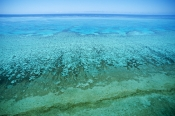 AERIALS;AUSTRALASIA;AUSTRALIA;COASTS;CORAL-REEFS;HABITAT;LANDSCAPES;MARINE;PATTERNS;Shallow;TROPICAL;great-barrier-reef;sea;tropics