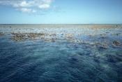 AUSTRALASIA;AUSTRALIA;CORAL-REEFS;LANDSCAPES;MARINE;Site;TROPICAL;Tidal;heritage;low;sea;tropics