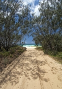 moreton-island;moreton-island-national-park;queensland-national-park;australian-national-park;middle-road;moreton-island-middle-road;moreton-island-4wd-track