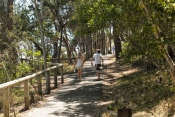noosa;noosa-national-park;noosa-bushwalk;noosa-national-park-bushwalking