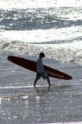 coolangatta-beach;gold-coast;queensland-gold-coast;boy-with-surfboard;walking-with-surfboard;queensland-surfer