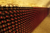 winery;cellar-winery;wine-tanks;wine-casks;wine-barrels;penfolds-winery;adelaide;penfolds-winery-tour;south-australian-wine;penfolds;wine-bottles