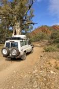 4Wheel Driving & 4WD Tracks