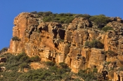 flinders-ranges;flinders-ranges-national-park;wilpena-pound;wilpenna;south-australian-national-park;australian-national-park;sandstone-cliff