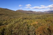 wangarra-lookout;wilpena;wilpena-pound;flinders-ranges;flinders-ranges-national-park;south-australian-national-park