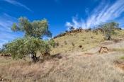 flinders-ranges-national-park;brachina-trail;brachina-geological-trail;south-australian-national-park;australian-national-park;outback;south-australia-outback;flinders-ranges;wilpena-pound;wilpena-campground