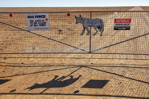 dog fence;the dog fence;dog fence board;dog fence gate;muloorina;muloorina station;oodnadatta track;outback station;australia's dog fence;gate;close the gate;outback gate;station gate