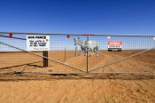 dog-fence;the-dog-fence;dog-fence-board;dog-fence-gate;muloorina;muloorina-station;oodnadatta-track;outback-station;australias-dog-fence;gate;close-the-gate;outback-gate;station-gate