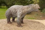 naracoorte-caves-national-park;naracoorte-caves;south-australia-national-park;world-heritage-site;australian-national-park;australian-world-heritage-site;megafauna;australian-megafauna;marsupial-elephant;diprotodon-australis