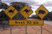 wildlife-sign;nullarbor;crossing-the-nullarbor;eyre-highway;nullarbor-sign;nullarbor-animal-caution-sign;animal-caution-sign