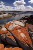 binalong-bay;bay-of-fires;granite-rocks;orange-lichen-on-granite-rocks;northeast-tasmania;tasmania;tassie;tasmania-coastline;humbug-point-conservation-area