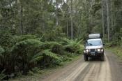 bruny-island;tassie;tasmania;unsealed-road;4wd-road;bruny-island-road