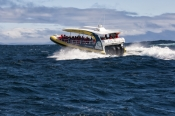 south-bruny-island;south-bruny-national-park;bruny-island;bruny-island-cruises;bruny-island-charters;bruny-island-boat-trip