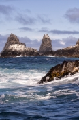 tasman-sea-coastline;southern-ocean-coastline;bruny-island;south-bruny-island;south-bruny-national-park;tasmania;tassie;tasmania-national-park;bruny-island-coastline;bruny-island-cruises