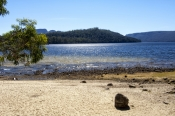 lake-st-clair;lake-saint-clair;cradle-mountain-lake-st-clair-national-park;tasmania;tassie;tasmania-national-park;australian-national-park;alpine-lake-tasmania