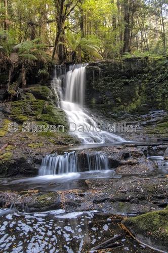 horseshoe falls;mount field national park;mt field national park;tasmania;tassie;temperate rainforest;tasmanian national park;australian national park;waterfall;mount field waterfall